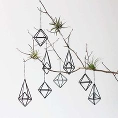 Eco-Friendly Tree Ornaments