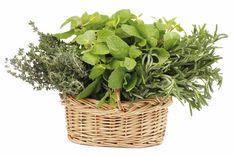 Ramo de cheiros e Cubos de ervas  - Visite-nos em: www.teleculinaria... | Descubra receitas deliciosas, truques, dicas, cursos, o Blog Culinária A-Z e muito mais!