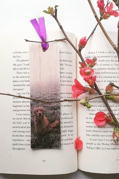Keep track of your place in a favourite book, journal or magazine with this unique handmade wood dog bookmark. You will no longer need to reach for an old receipt or scrap of paper to mark your place…and no more folding the corners of pages! Each bookmark is handmade in Australia using lightweight, flexible wood, gorgeous photo image transfer and finished with coloured ribbon. #stitchandwood #bookmark #retriever #dog #giftidea Dogs Golden Retriever, Retriever Dog, Flexible Wood, Wood Transfer, Wood Dog, Ribbon Colors, Book Journal, Dog Photos, Book Lovers