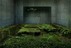 photos by Sergio Gioberto and Marilena Noro  this reminds me of portal 2.. lol
