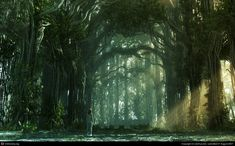 fantasy garden, litteraly fantasy