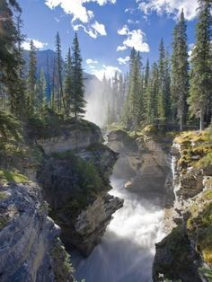 Metal Print: Athabasca Falls Waterfall, Jasper National Park, Alberta, Canada by Michele Falzone : 16x12in