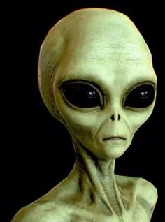 Scientist says Aliens in UFOs might be Earthlings from the Future - Aliens are Humans Aliens Guy, Les Aliens, Aliens And Ufos, Alien Gris, Grey Alien, Alien Pictures, Alien Photos, Tatoo Alien, Ancient Aliens Meme