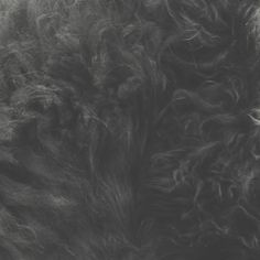 Cashmere Cat – Mirror Maru (Remixes)   Pixel Colors