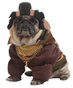 ROFL @ Pug Dog in Mr. T Pet Costume - I pity the fool!