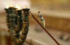 Agricultor aposentado gasta 30 anos criando um modelo do Templo de Herodes
