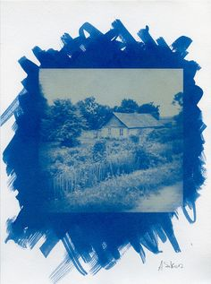Cyanotype print on Aquarelle paper... photograph by Artur Sikora ...
