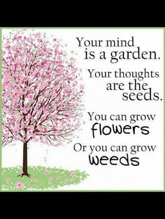 Your mind is a garden; your thoughts are the seeds. You can grow FLOWERS, or you can grow WEEDS.