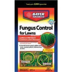 Bayer Advanced 701230A Fungus Control For Lawns, Granules, 10-Pound Bayer Advanced,http://www.amazon.com/dp/B001H1LNZM/ref=cm_sw_r_pi_dp_fNAxtb0S3PPC264Y
