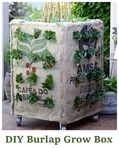 DIY Burlap Grow Box - grow everything from beans, lettuce, cabbage, carrots, strawberries, herbs and more in just this one box... plenty of space... #gardening #diy #homesteading