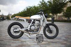 Dominator Notre Dame Moto Plus