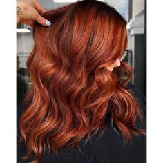 Ginger Snap - Behindthechair.com