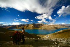 Tibet Days . .