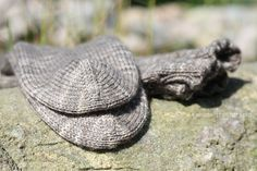 anana: Villasukat pyöröpuikolla varpaista varteen, kaksi kerralla! [kuvallinen ohje] Turtle, Sewing, Knitting, Hats, Animals, Fashion, Moda, Turtles, Dressmaking