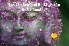"""¿Los Chakras y el Reiki están relacionados?  http://qoo.ly/i7q2t  TERAPIA """"CAMBIOS POSITIVOS""""  Terapia Energética basada en Reiki.  Cambios Positivos combina diversas herramientas para ayudarte a hacer cambios positivos en tu vida!!"""