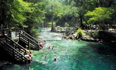 Madison Blue Springs State Park 8300 N.E. S.R. 6 Lee FL 32059 USA 850-971-5003