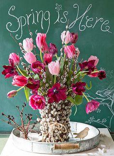Spring is here ~ Napi Boldogsag