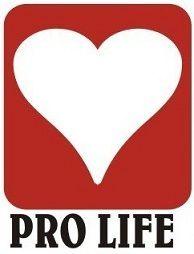 Pro God, Pro Guns, Pro Life, Anti Obama Bumper Sticker