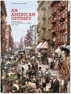 American Odyssey by Sabine Arqué,http://www.amazon.com/dp/3836542102/ref=cm_sw_r_pi_dp_hs8vtb1MPBVVQE6A