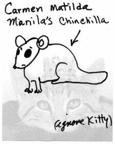 Carmen Matild Manila's Chinchilla by linda vernon