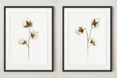 Cotton Set of 2, Floral Wall Painting, Cotton Bolls Drawing, Abstract Flower Illustration, Natural Cotton Plant by ColorWatercolor on Etsy