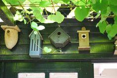 Casas para pajaros en el jardín holandés Tuinfleur. Bird Houses en the Dutch garden Tuinfleur. Foto Estudio Amalia Robredo.
