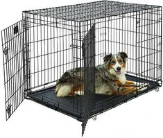 Large Dog Crate MidWest iCrate Double Door Folding Metal Dog Crate Divider Panel, Floor Protecting Feet, Leak-Proof Dog Tray x x Inches, Large Dog, Black Large Dog Cage, Extra Large Dog Crate, Dog Playpen, Pet Kennels, Dog Cages, Pet Cage, Large Dog Breeds, Large Dogs, Small Dogs