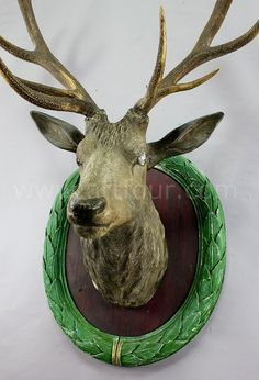 antique carved wood stag head with huge antlers
