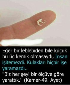 #ayet corek-otu-yagi.com Kullanıldı Nasa, Allah Love, Allah Islam, Magic Words, Wtf Fun Facts, Word Up, Innovation, Verse, Sufi