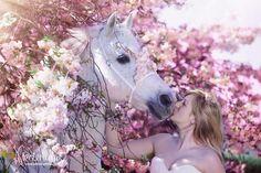Frühling/Sommer - Pferdefotografie, Hundefotografie, Fotografie Bettina Niedermayr Pferde - Mensch & Pferd - Hunde- Portrait - Stallschilder - Kalender, Pferdekalender, Haflingerkalender mit Kohlfuchs Liz. Steiermark