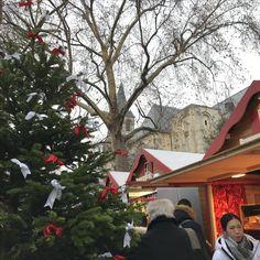 Christmas market in Saint-Germain-des-prés: Latin Quarter 🎅🏼