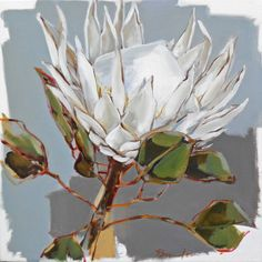 Women's Special: Four-Strategies Flowers Can Modify Your Working Day-To-Day Lifestyle Protea 1 Oil Painting - Sold Protea Art, Protea Flower, Art Floral, Tea Bag Art, Oil Painting Abstract, Fruit Painting, Simple Art, White Art, Botanical Art