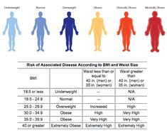 Body Mass Index (BMI) is a simple index of weight for height which is widely used to categorize underweight, overweight and obesity. BMI is bodyweight (kg)… Gain Weight Fast, Lose Weight Naturally, Weight Loss Tips, Losing Weight, Bmi Chart For Women, Health And Nutrition, Health And Wellness, Fitness Diet, Health Fitness
