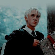 Draco Harry Potter, Harry Potter Icons, Mundo Harry Potter, Harry James Potter, Harry Potter Characters, Harry Potter Tumblr, Tom Felton, Draco Malfoy Aesthetic, Slytherin Aesthetic