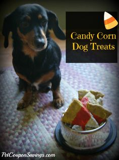 "Homemade Candy Corn Dog Treats! Don't worry, these aren't ""real"" candy corn, but they sure look like it!"