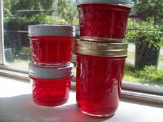 How To Make Prickly Pear Cactus Jelly