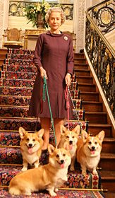 When she was younger, the Queen would take her royal Corgis on the lead. Queen Elizabeth is an excellent advocate for the Corgi.