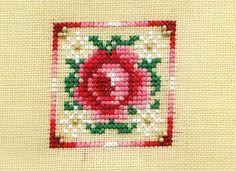 Peppermint Rose  LOVE