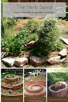 The Herb Spiral: a permaculture garden concept and design | Spiraea Herbs