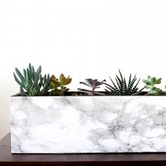 Make your own marble succulent planter, with this quick easy DIY!