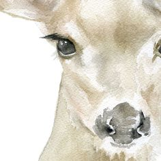 A sweet Doe watercolor giclée reproduction. Portrait/vertical orientation. Printed on fine art paper using archival pigment inks. This quality printing allows over 100 years of vivid color in a typica