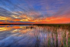 Colorful Everglades Sunset