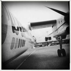 FlyBe   Flickr - Photo Sharing!