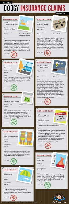 #Funny #Infographics - Crazy Insurance Claims #Infografia