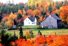 Maine Fall Farm Photo