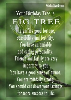 Fig Tree. It signifies good fortune, sensibility and fertility. You have an amiable and caring personality. Friends and family are very important to you. You have a good sense of humor. You are mentally strong. You should cut down your laziness for more success in life.