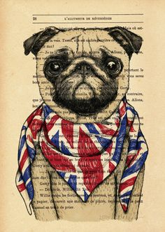 ARTFINDER: BRITISH PUG by EVA FIALKA - Print from my original illustration, on old french book page. From 1950's. The paper is thick, color marked by time but in excellent condition. Size: 20.7c...
