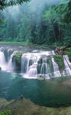 Lower Lewis River Falls | Travel | Vacation Ideas | Road Trip | Places to Visit | WA | Natural Feature | Forest | Hiking Area