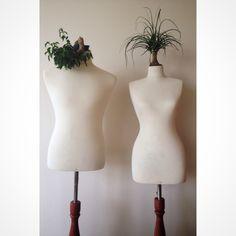 Mimoss, plantlove Plant Design, Indoor Gardening, Lighting, Home Decor, Products, Decoration Home, Room Decor, Lights, Home Interior Design
