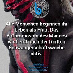 #bluefacts #fakt #fakten #zitate #quotes #weisheit #wissen #intelligenz #unnützes #wisdom #spruch #sprüche #klug